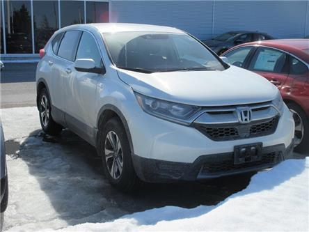 2018 Honda CR-V LX (Stk: K16589A) in Ottawa - Image 1 of 4