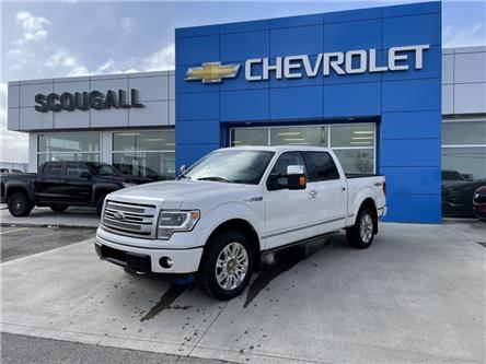 2014 Ford F-150 Platinum (Stk: 225904) in Fort MacLeod - Image 1 of 11