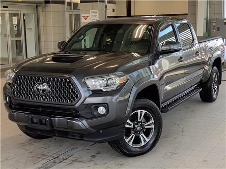 2019 Toyota Tacoma SR5 V6 (Stk: P19360) in Kingston - Image 1 of 13