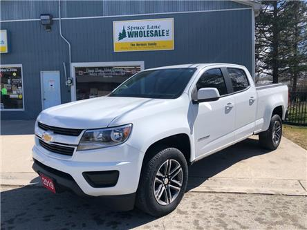 2019 Chevrolet Colorado WT (Stk: 47436) in Belmont - Image 1 of 18