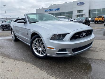 2014 Ford Mustang V6 Premium (Stk: L-81A) in Calgary - Image 1 of 20