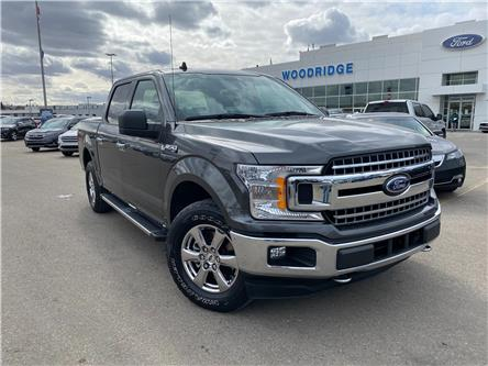 2019 Ford F-150 XLT (Stk: T30562) in Calgary - Image 1 of 20