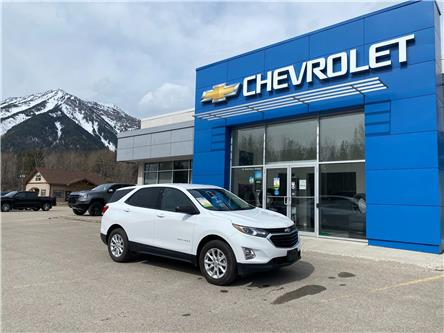 2019 Chevrolet Equinox LS (Stk: 50121M) in Fernie - Image 1 of 11