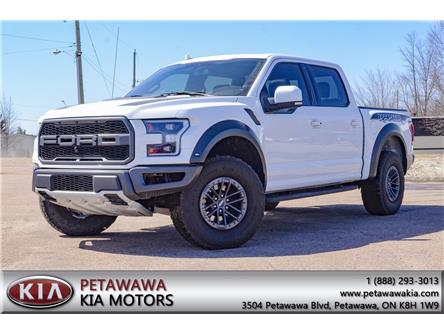 2019 Ford F-150 Raptor (Stk: P0100) in Petawawa - Image 1 of 30