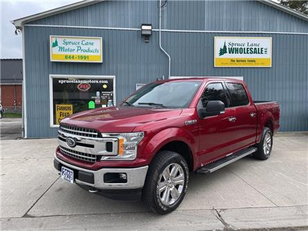 2019 Ford F-150 XLT (Stk: 05564) in Belmont - Image 1 of 28