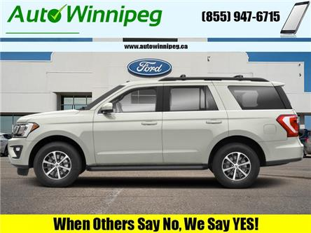 2019 Ford Expedition Limited (Stk: 21047A) in Winnipeg - Image 1 of 9