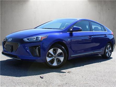 2019 Hyundai Ioniq EV Preferred (Stk: HB3-3513A) in Chilliwack - Image 1 of 17