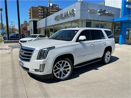 2018 Cadillac Escalade Luxury (Stk: 21073A) in Chatham - Image 1 of 20