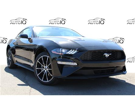 2021 Ford Mustang EcoBoost (Stk: 210302) in Hamilton - Image 1 of 15