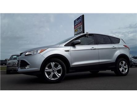 2015 Ford Escape SE (Stk: P822) in Brandon - Image 1 of 28