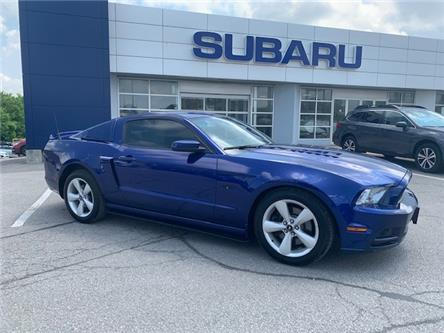 2013 Ford Mustang GT (Stk: P1006A) in Newmarket - Image 1 of 14