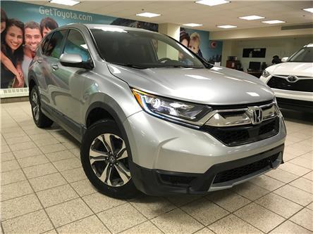 2018 Honda CR-V LX (Stk: 211099A) in Calgary - Image 1 of 11