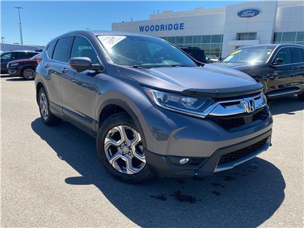 2019 Honda CR-V EX (Stk: 17870) in Calgary - Image 1 of 21