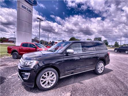 2019 Ford Expedition Platinum (Stk: 15308L) in Wyoming - Image 1 of 27
