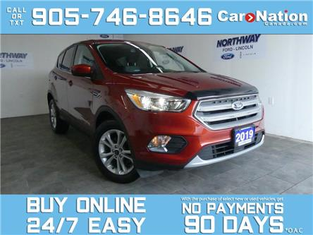 2019 Ford Escape SE | SAFE & SMART PKG | TOUCHSCREEN | 1 OWNER (Stk: 1EG6253A) in Brantford - Image 1 of 24