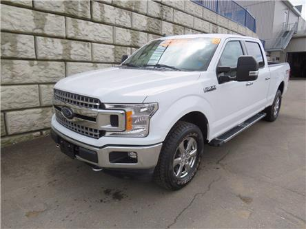 2019 Ford F-150 XLT | AC | Apple Carplay/Android Auto | XM HD Radi (Stk: D10470A) in Fredericton - Image 1 of 19