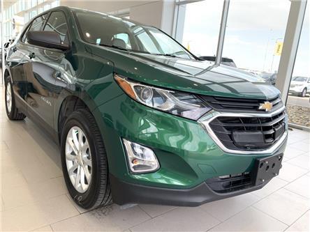 2019 Chevrolet Equinox LS (Stk: F0404) in Saskatoon - Image 1 of 9