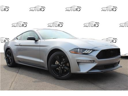 2021 Ford Mustang EcoBoost (Stk: 210464) in Hamilton - Image 1 of 14