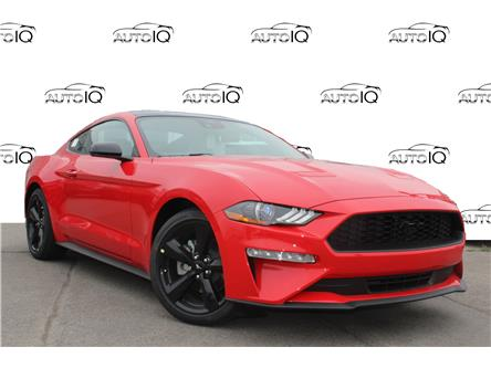 2021 Ford Mustang EcoBoost (Stk: 210385) in Hamilton - Image 1 of 24