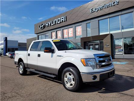 2014 Ford F-150 XLT (Stk: N1452A) in Charlottetown - Image 1 of 19