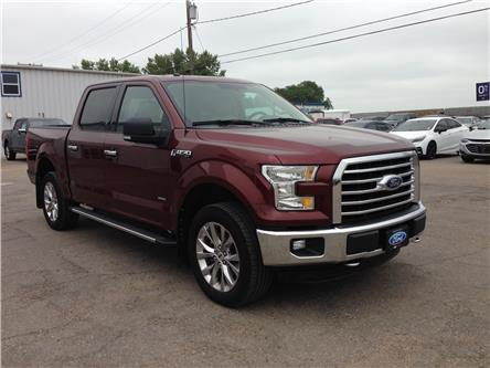2016 Ford F-150 XLT (Stk: 21148A) in Wilkie - Image 1 of 21