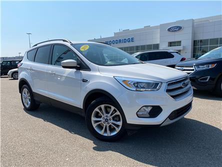 2019 Ford Escape SEL (Stk: M-535A) in Calgary - Image 1 of 21