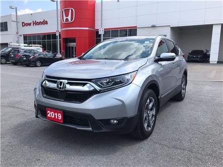 2019 Honda CR-V EX (Stk: 29655AA) in Ottawa - Image 1 of 18
