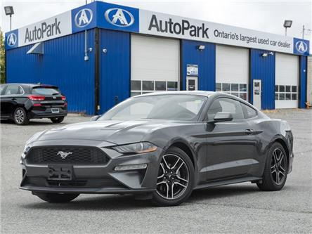 2019 Ford Mustang  (Stk: 19-55145AR) in Georgetown - Image 1 of 20