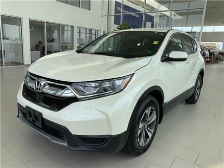 2018 Honda CR-V LX (Stk: F0536) in Saskatoon - Image 1 of 21