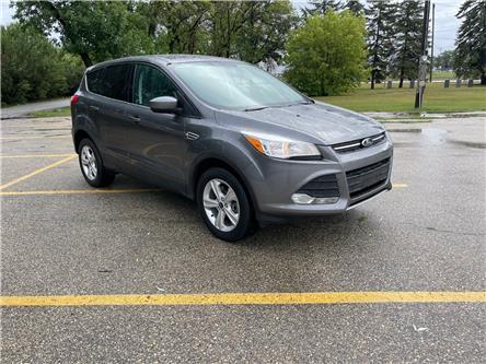 2013 Ford Escape SE (Stk: 10335.0) in Winnipeg - Image 1 of 21