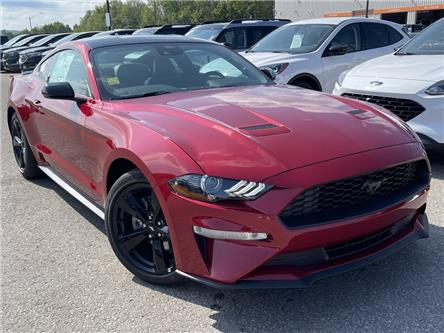 2021 Ford Mustang EcoBoost Premium (Stk: 21MU22) in Midland - Image 1 of 14