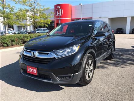 2019 Honda CR-V LX (Stk: 29898L) in Ottawa - Image 1 of 17
