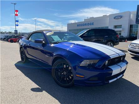 2014 Ford Mustang GT (Stk: 17933) in Calgary - Image 1 of 20