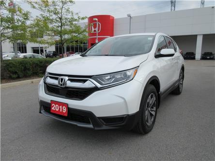 2019 Honda CR-V LX (Stk: 29904L) in Ottawa - Image 1 of 18