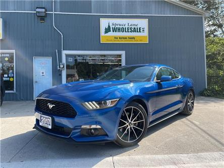 2017 Ford Mustang EcoBoost (Stk: 11416) in Belmont - Image 1 of 24