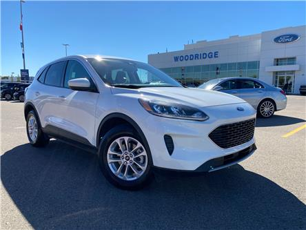 2020 Ford Escape SE (Stk: 17947) in Calgary - Image 1 of 21