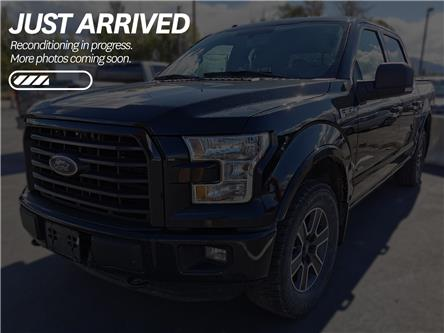 2016 Ford F-150  (Stk: B11986A) in North Cranbrook - Image 1 of 2