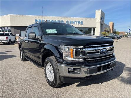 2020 Ford F-150 XLT (Stk: P10108A) in Brampton - Image 1 of 19