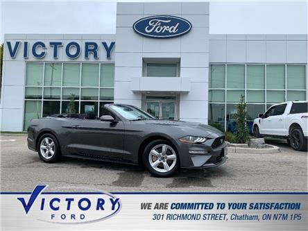 2018 Ford Mustang  (Stk: V4584) in Chatham - Image 1 of 26