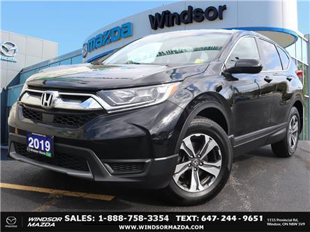 2019 Honda CR-V LX (Stk: PR07150) in Windsor - Image 1 of 24