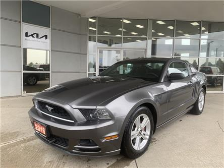 2014 Ford Mustang V6 (Stk: 22124A) in Kitchener - Image 1 of 16