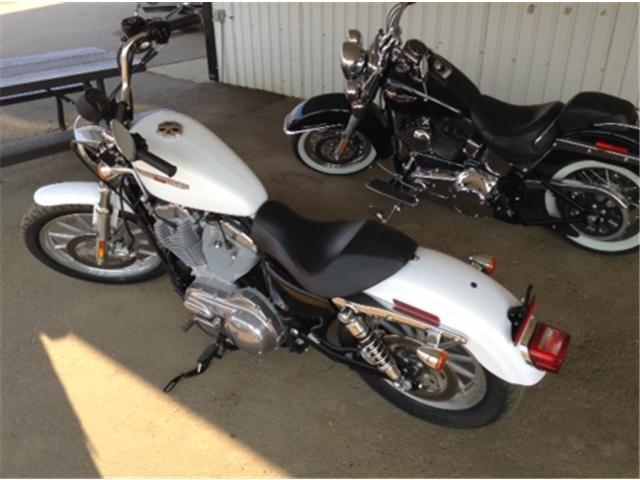 2007 Harley-Davidson FLSTCI  (Stk: OC017B) in  - Image 1 of 4
