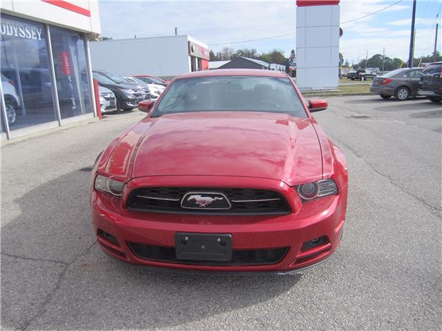 2013 Ford Mustang V6 Premium (Stk: 1734A) in Simcoe - Image 2 of 14