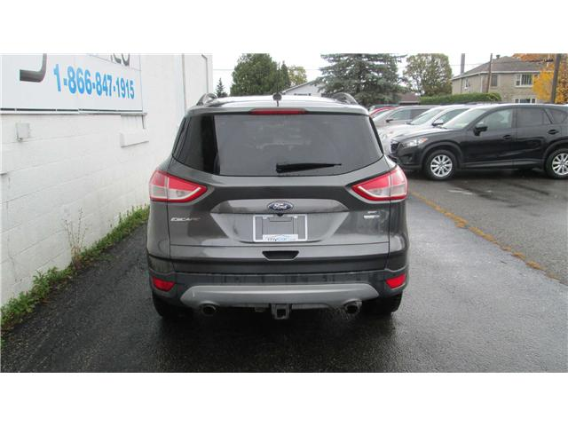 2015 Ford Escape SE (Stk: 171498) in Kingston - Image 4 of 12