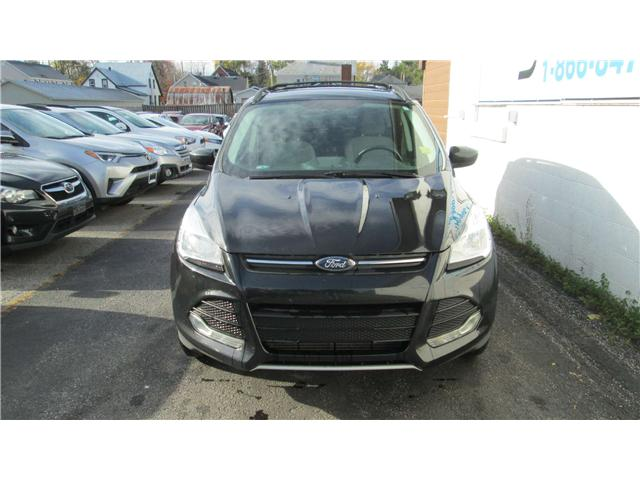 2014 Ford Escape SE (Stk: 171600) in Kingston - Image 1 of 12
