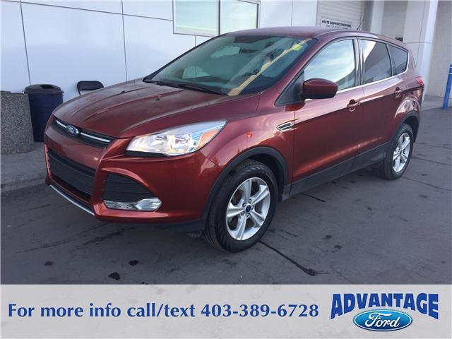 2015 Ford Escape SE (Stk: 5099) in Calgary - Image 1 of 10
