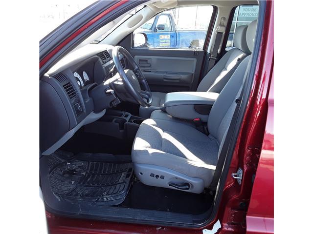 2008 Dodge Dakota SXT (Stk: P205) in Brandon - Image 6 of 9