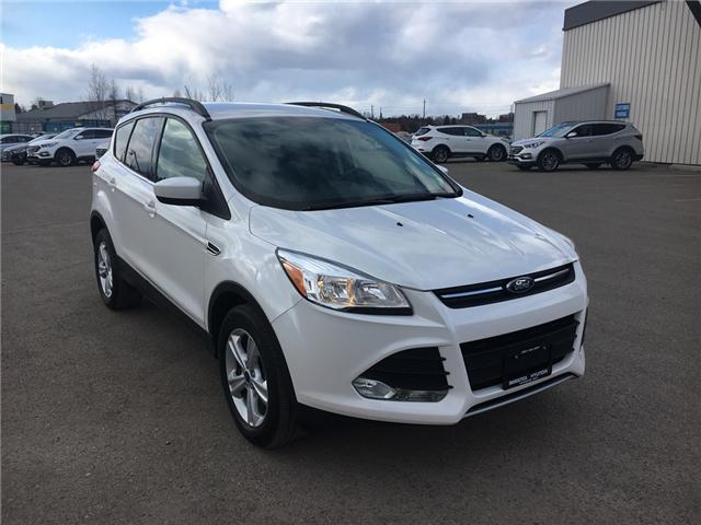 2015 Ford Escape SE (Stk: 15164A) in Thunder Bay - Image 1 of 18