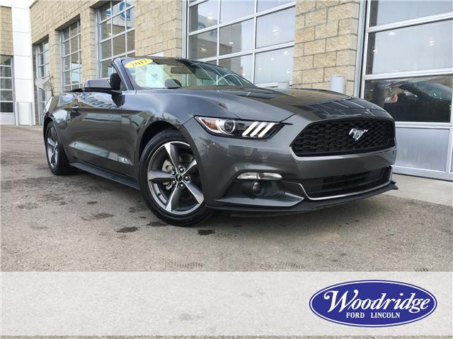 2017 Ford Mustang V6 (Stk: 16899) in Calgary - Image 2 of 20