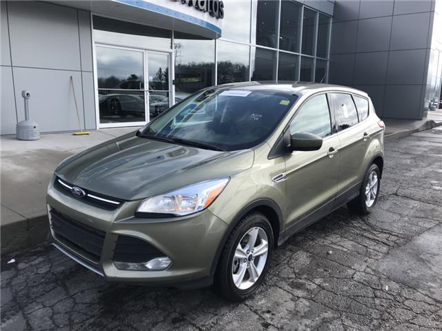 2014 Ford Escape SE (Stk: 20954) in Pembroke - Image 2 of 12